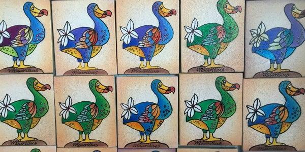 Dodo Mauritius Evolution Veränderung